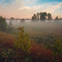 Ранним утром :: Николай Алехин