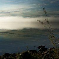 Утро...туманное.... :: Александр Буланов