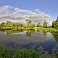 Блюдце деревенского пруда :: Константин