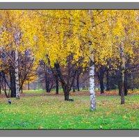 Осенний этюд - 2 :: Александр Атаулин