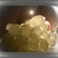 Гроздь винограда, наливаясь, взять у Природы все смогла.... :: Людмила Богданова (Скачко)