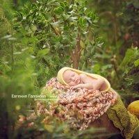 Фотосессии новорожденных в Краснодаре и крае :: Евгения Гапонова