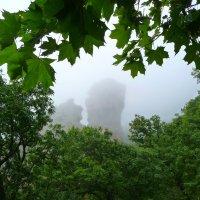 Встреча в тумане. Окаменевшие тролли на г. Бештау :: Vladimir 070549