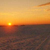 морозное утро :: владимир володенок