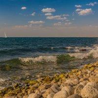 Шум прибоя и запах моря... :: Александр Пушкарёв