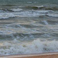 Азовское море :: Михаил Рублевский
