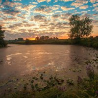 Утро :: Николай Алехин