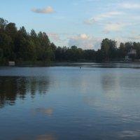 вечернее озеро :: Елена