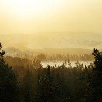 Silence of nature :: Алексей Глашкин
