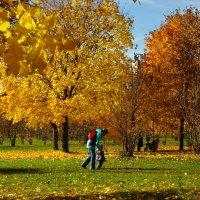 Осенний этюд 3. :: Александр Атаулин