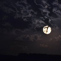 Небесные художества :: cfysx