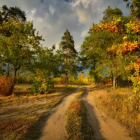 Приглашение в осень... :: Roman Lunin