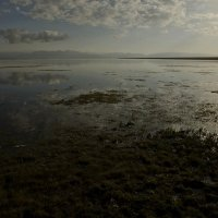Озеро Сон-Коль :: Александр Грищенко