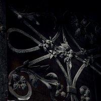 старые кованные ворота :: Ирина