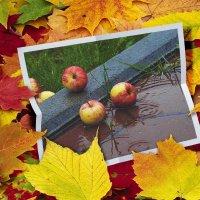 Осень :: A. SMIRNOV