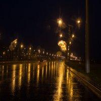 дождливая ночь :: Евгений Шевелев