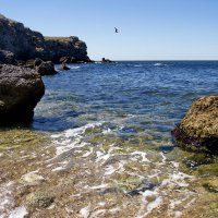 Горбатый берег греет спину... :: Валерий Басыров