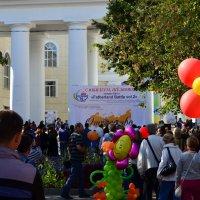 Праздник в Щёлково. :: Oleg4618 Шутченко