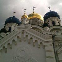 Монастырские купола :: Ольга Кривых