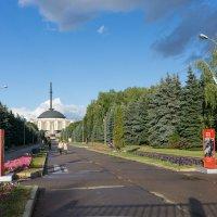 Парк Победы :: Евгений Иванов
