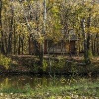Осення пора.. :: ФотоЛюбка *