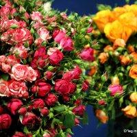 таинство цветов :: Олег Лукьянов