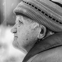 Снег :: Роман Рыбальченко
