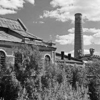 Сахарный завод...бывший. :: Ирина Нафаня