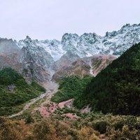 Горные вершины :: Zifa Dimitrieva