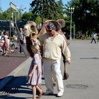 По улицам верблюда водили :: Александр Шихин