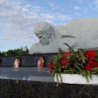 """Монумент """"Мужество"""" :: Вячеслав Х."""