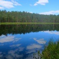 """озеро """"Лилия"""" :: Елена"""