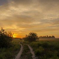 Дорога на рассвет... :: Ксения Довгопол