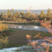 Пейзаж :: Владимир Красевский