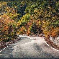 вот и осень :: Sergey Bagach