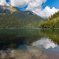 Абхазия. Озеро Рица. :: Igor Yakovlev