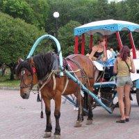 Туристический микроавтобус :: Михаил Андреев