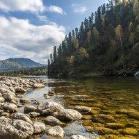Река Бия :: Александр Скалозубов