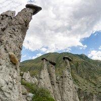 Каменные грибы :: Александр Решетников