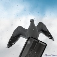 падает снег.. :: Борис Швец