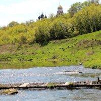 Пешеходный мостик через реку Нугрь. :: Борис Митрохин