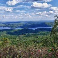 Панорама :: Светлана Игнатьева