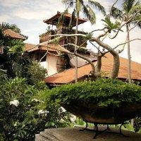 Бали. :: Павел Чкалин