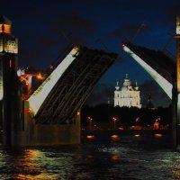 Вид с Большеохтинского моста на Смольный собор :: Семья Фоменковых