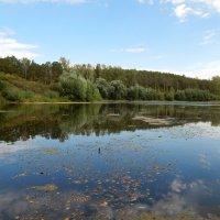 Озеро :: Светлана Н