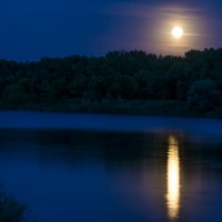 Вечерняя прогулка под Луной :: Евгения Порядина