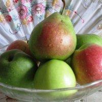 Яблоки и груши :: Самохвалова Зинаида