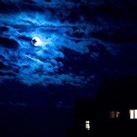 Лунная ночь :: Дмитрий Долгов