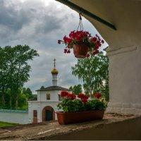 красные цветы :: Moscow.Salnikov Сальников Сергей Георгиевич