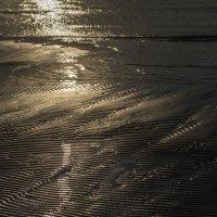 Песок :: shvlad